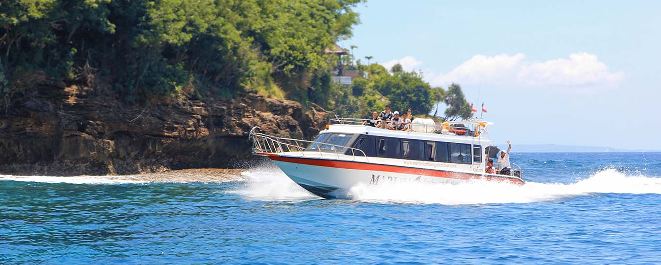 Experience the truly fast cruises